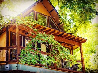 Fall Specials! Gorgeous Cabin on River Road by Guadalupe River!