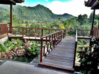 Villa Barong Sidemen