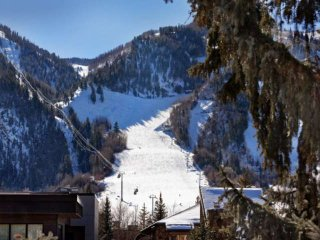 Amazing Aspen Mountain Views. Convenient Year-Round Location! Elevator, Free Par