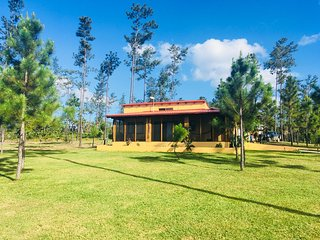 The Pua Villa at Kane Villas -  Mountain Pine Ridge