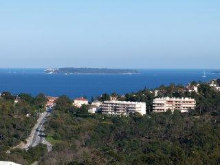 Joli Rez-de-Jardin dans grand domaine surplombant la mer,  avec grande Piscine