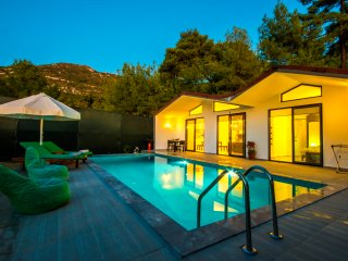 Secluded Contemporary  Honeymoon Villa with Private Pool