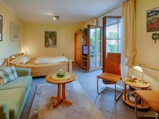 Apartment Nr.1, mit 40 m², Sauterrain, Hanglage, Terrasse, ohne Klassifizierung