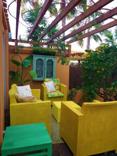 A cosy sitting area next to the mature lemon tree