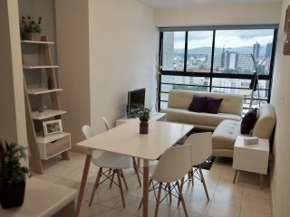 Perfect new apartment near downtown Mexico City