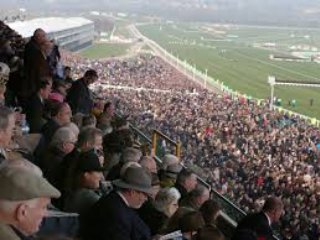 Gold Cup Day Cheltenham Racecourse