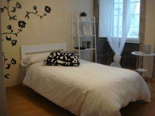 100068 -  Apartment in Santiago de Compostela