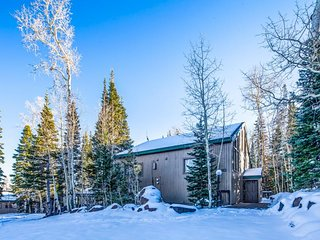 Spacious family-friendly condo ski-in/ski-out at Navajo! Dogs welcome!