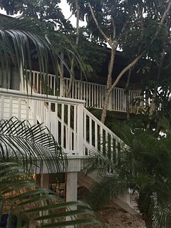 The balcony has a 'tree house' feel.