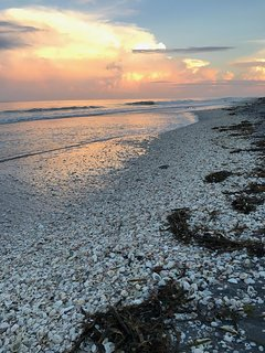 Beachcomber's Retreat!  Steps to Barefoot Bliss Beaches & Stunning Sunsets