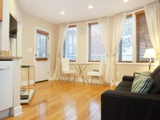 New Adams Morgan 1br, easy to Dupont, Wooldey Park, White House, metro