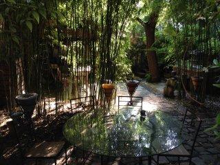Chambre d'hôtes, terrasse, jardin et  jacuzzi
