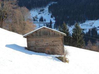 Alpin #19928.1