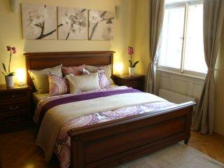 Luxurious 2 bedroom apt. in Old town free wifi