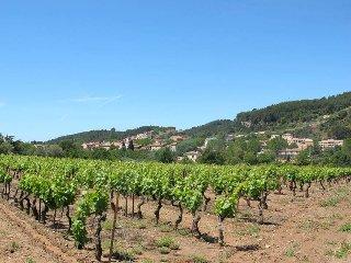5 bedroom Villa in Gonfaron, Provence-Alpes-Cote d'Azur, France : ref 5437061