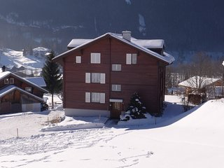 Grindelwald Apartment Sleeps 4 with WiFi - 5223953