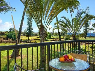 OCEAN VIEW Poipu Bliss**  FAST WIFI** Ground Floor**