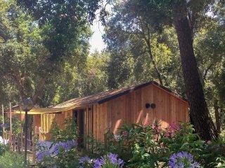 3 bedroom Villa in Donoratico, Tuscany, Italy : ref 5558253