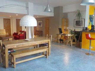 La Laiterie, superbe appart/loft cosy 115 m2 dans maison de ville proche centre