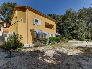 One bedroom apartment Artatore (Lošinj) (A-8022-a)