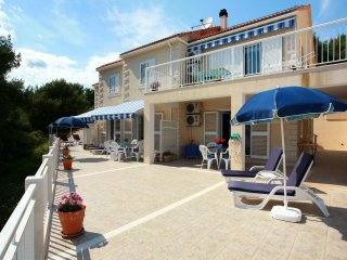 One bedroom apartment Sumartin (Brac) (A-2940-a)