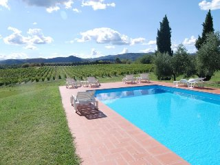 1 bedroom Villa in Bucine, Tuscany, Italy : ref 5427258