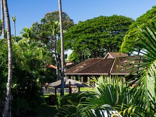Aina Nalu Resort  I -208 - ideal for Island Hopping!  2 Blocks to Lahaina Town &