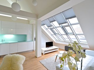 DESIGNER LOFT AT WENCESLAS SQUARE 2