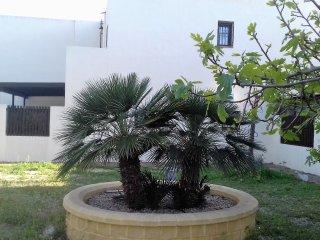 Villa Andalouse bord de mer