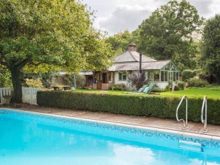 Spacious forest cottage + pool near Burley village, wild ponies live all around.