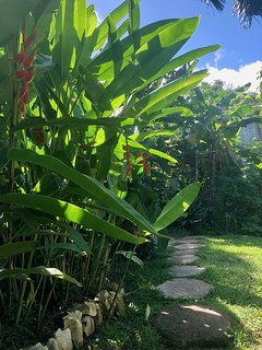 Pathway through botanical gardens that leads to Beach