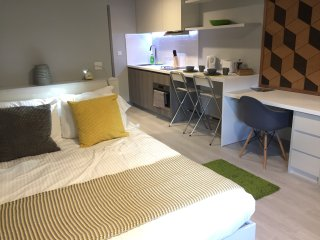 Modern Studio Apartment in City Centre 210