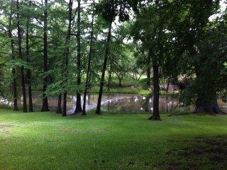 Cabin retreat on Cypress creek , walk to village of Wimberley.