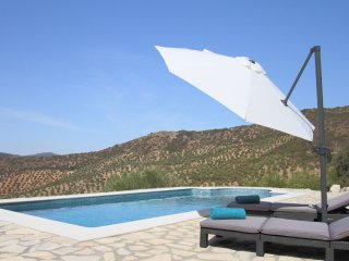 The sunshade and pool loungers for our guests´ use