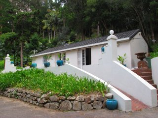 Constantia Cape Cottage : Gem in the Winelands.  Peace and tranquility