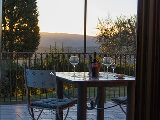BEST VIEW in SAN GIMIGNANO CITY Tuscany Sunny 1 bedroom PODERE MAGIONE FARM HOU