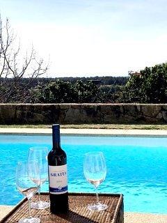 Pausa Villa in Moledo (Caminha) with private pool
