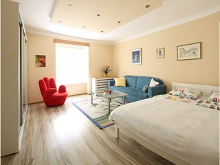 Newly renovated apartment in city center!