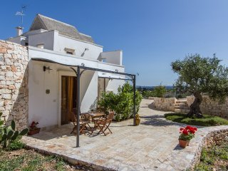 Farmhouse in olive groove with pool in the Itria Valley