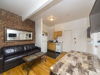 Cute 3 BR APT in Times Square (8569)