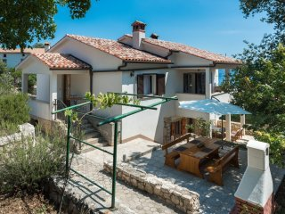 Holiday house Pavincica 101207