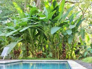 Casa Pacifico: 5 bedroom, 4.5 bathroom Walk to Playa Guiones Surf and Yoga