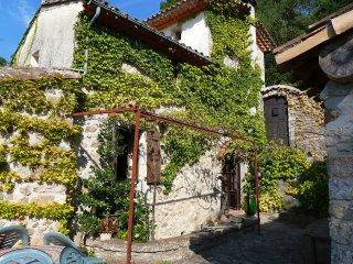3 bedroom Villa in Saint-Jean-du-Gard, Occitania, France : ref 5514985