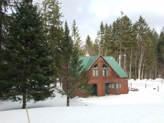 ☆ SKI ON & OFF! ☆ Spruce Glen A on Great Eastern Trail w/Sauna, Fireplace