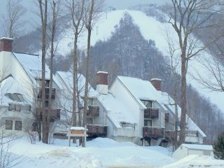 ☆ SKI ON & OFF ☆ Renovated Trailside Condo Hot Tub, Gym, Pool and more