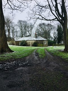 A snowy morning at Budle Lodge.