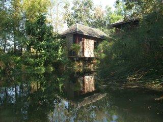 Baan Sammi Nature Resort — Lakeside Dillenia Bungalow in Nature