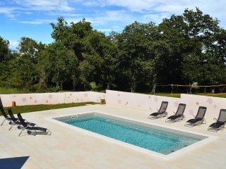 Buzinija Apartment Sleeps 8 with Pool Air Con and WiFi - 5460810