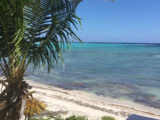Stunning  3 bedroom private beach home on  the Caribbean