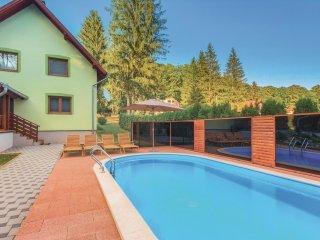3 bedroom Villa in Kamenski Vucjak, Pozesko-Slavonska Zupanija, Croatia : ref 55